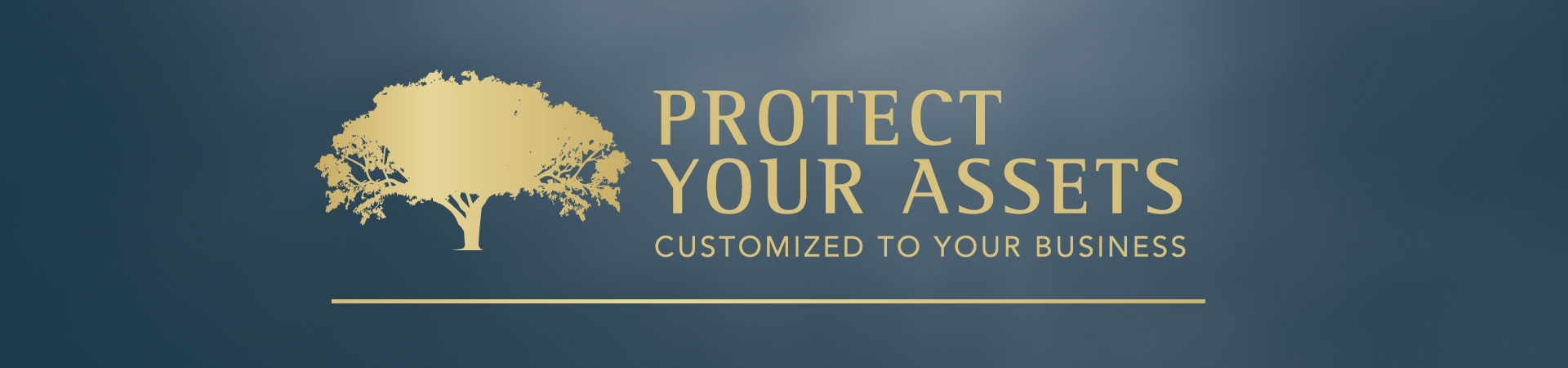 Mesq-header-design-protect-your-assets-20160503_1920x450